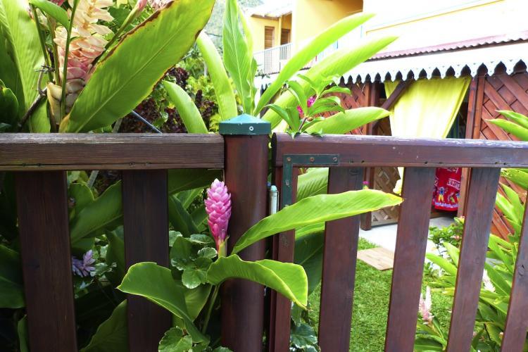 Une barrière de sécurité sépare le jardin de la piscine.
