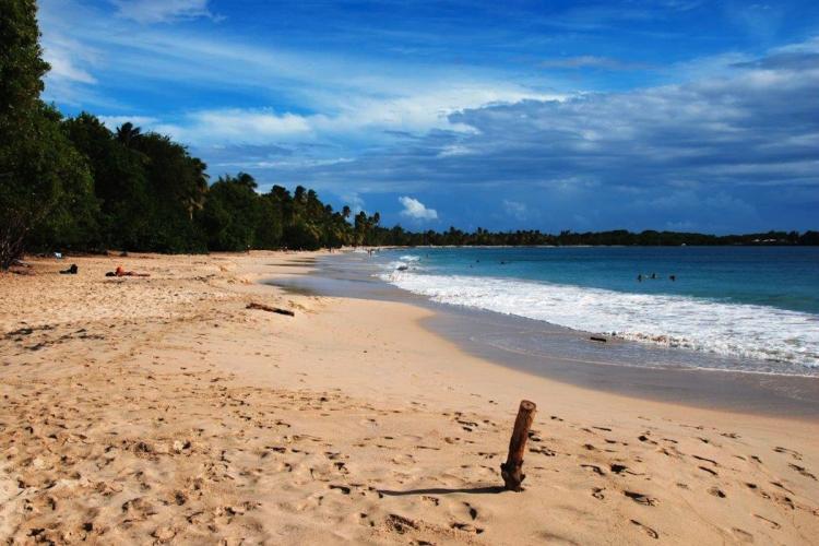 Une des nombreuses plages de Martinique