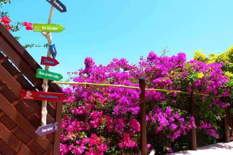 De la piscine de L'Oasis de L'Anse bleue pour aller à la plage, suivez la flèche, c'est à 4 minutes à pied.