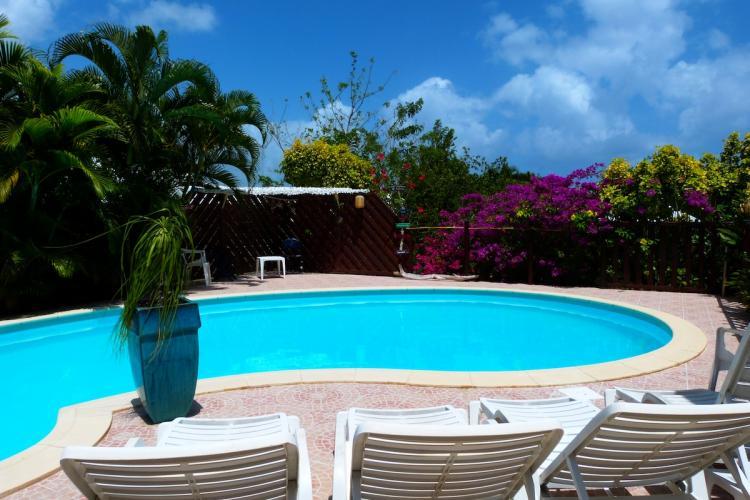 """La piscine de votre location de vacances """"L'Oasis de L'Anse bleue"""""""