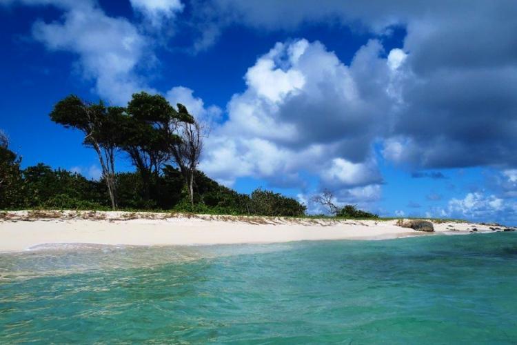 Côté atlantique, plage de grand Macabou au Vauclin