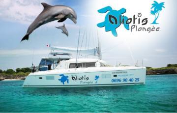 Club Aliotis plongée vous accueil sur son superbe catamaran.