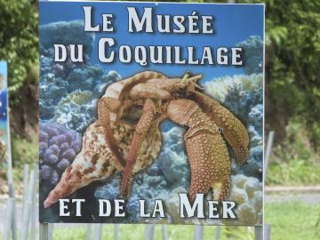 Le musée du coquillage se trouve sur les hauteurs du Diamant, sur la route des Anses d'Arlet.