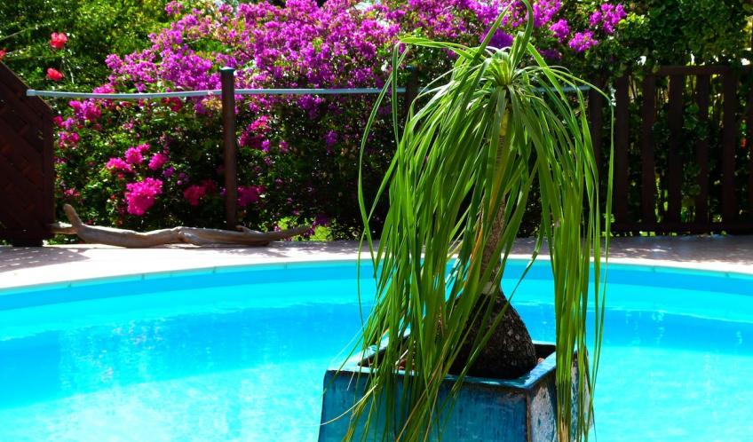 La piscine, à 2 pas de votre logement.