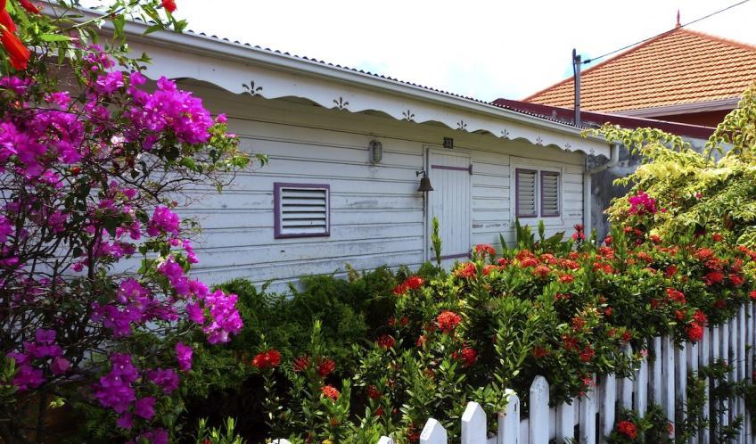 Une petite maison créole, noyée dans les fleurs.